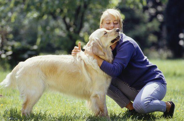 cachorro abraçando