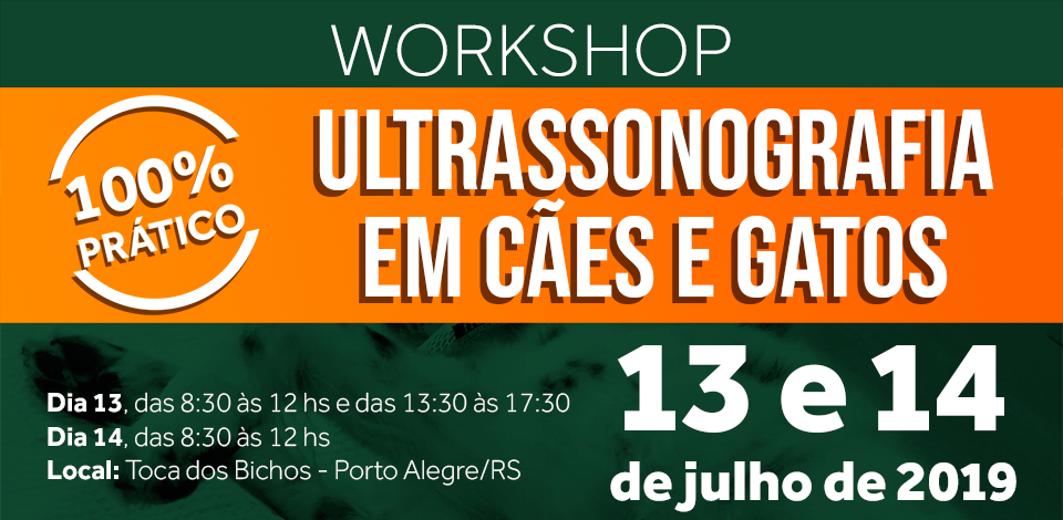 capa_workshop_ultrasonografia