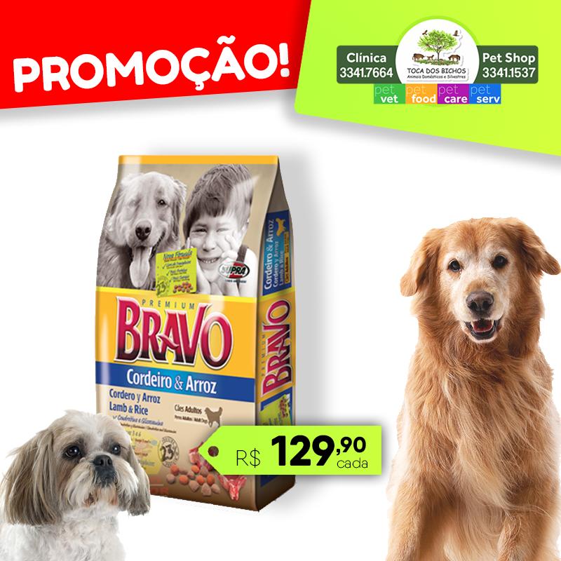 Bravo_cao_face