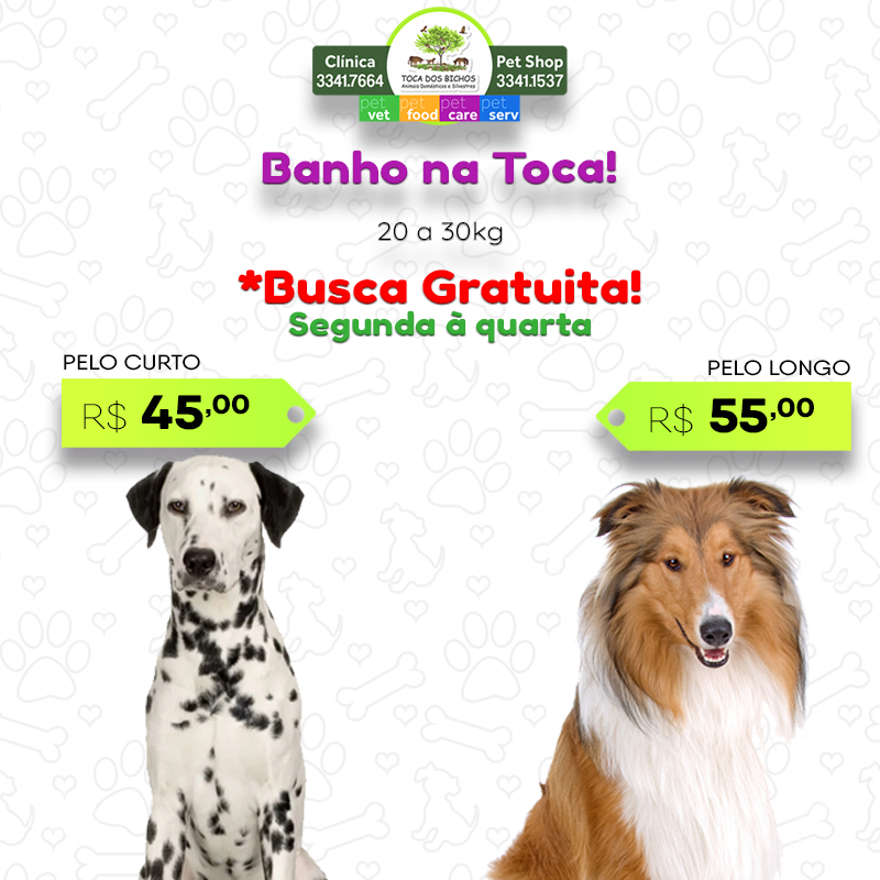 promoção_banho_20a30_novo