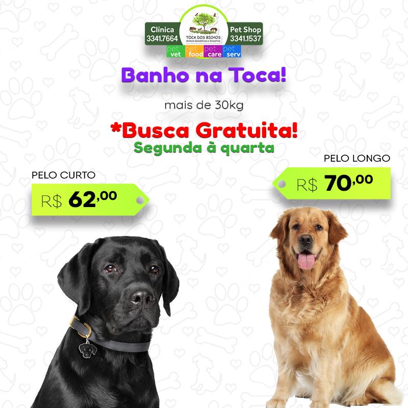 promoção_banho_+de30_novo