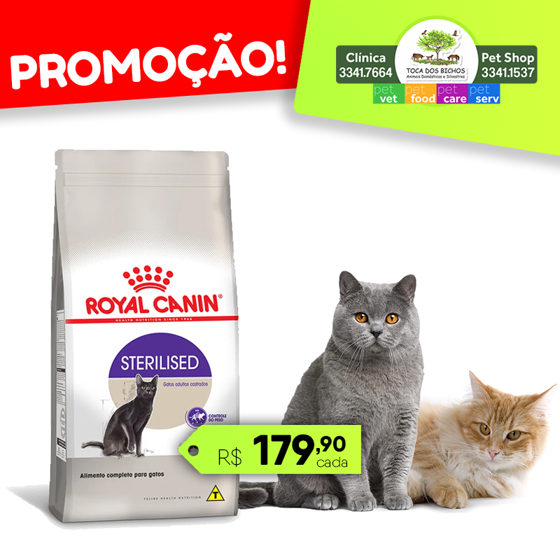 Royal_canin_gatos_face