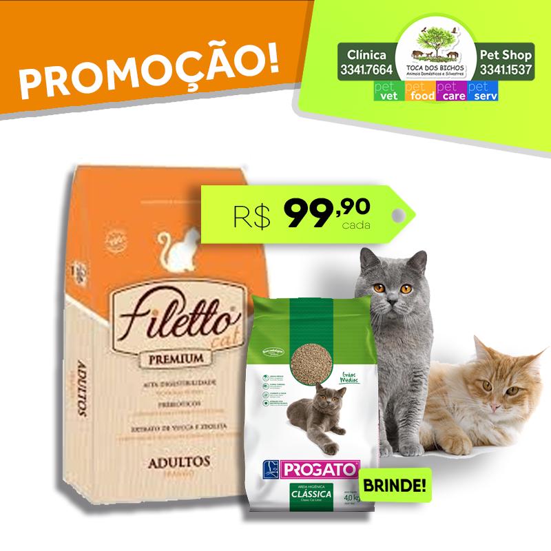 Filetto_gatos_adultos_clássica